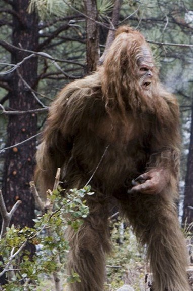 sasquatch_2-full